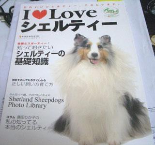 モデル犬ざますよ。