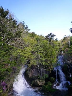 """""""竜頭の滝""""の最下部 (ミツバツツジはまだ少ししか咲いていませんでした)"""