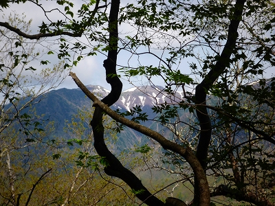 高山へ登る途中で見えた日光白根山 (今年は残雪が多そうです)