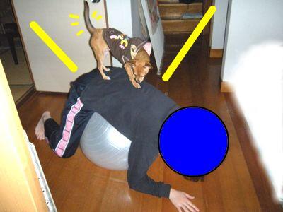 snap_yamatoss_2009101233829.jpg