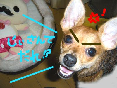 snap_yamatoss_2009101234454.jpg