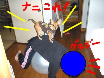 snap_yamatoss_2009101234627.jpg