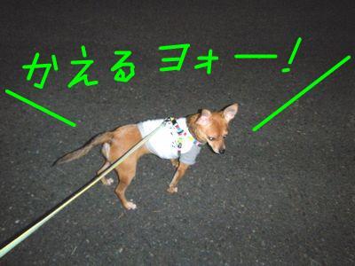 snap_yamatoss_2009105224722.jpg