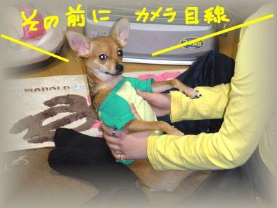 snap_yamatoss_2009105225213.jpg