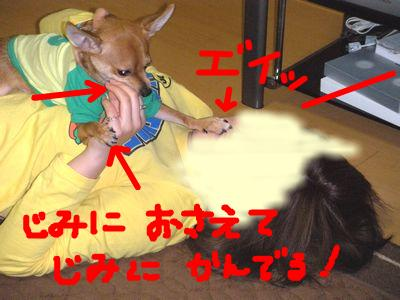 snap_yamatoss_2009105231411.jpg