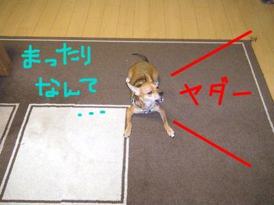 snap_yamatoss_2009105231534.jpg