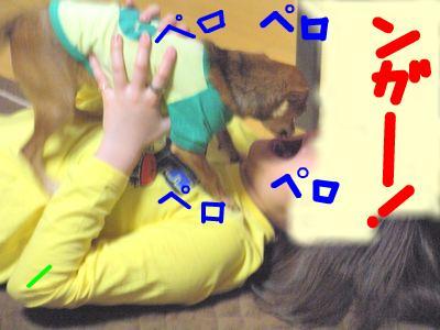 snap_yamatoss_2009105232122.jpg