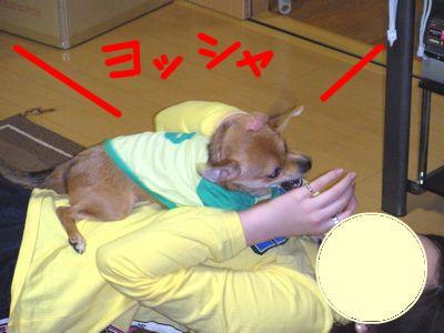 snap_yamatoss_200910523855.jpg