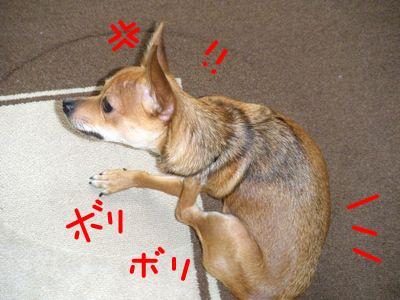 snap_yamatoss_200992222529.jpg