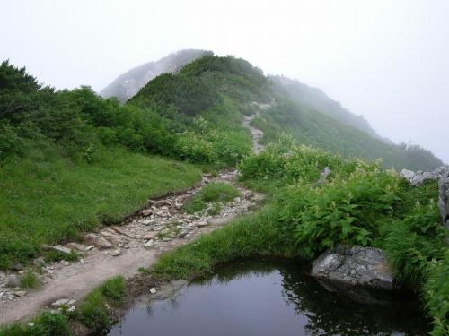 s-DSCN4669.jpg