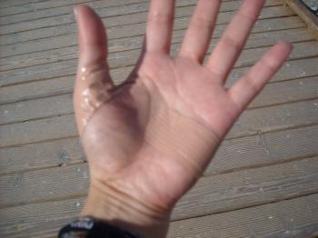 hand11.7