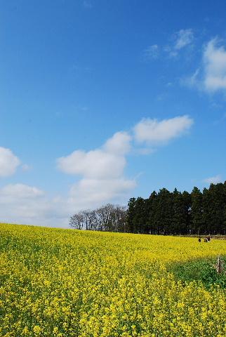 2011_0519_1.jpg