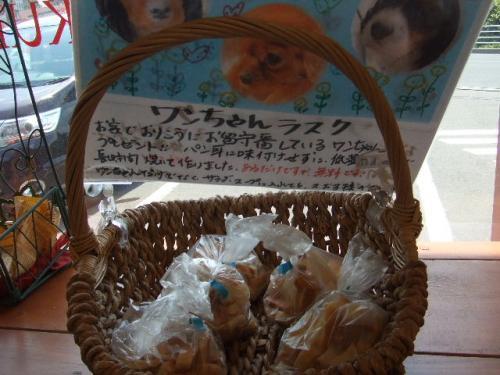 2011_0528_1.jpg