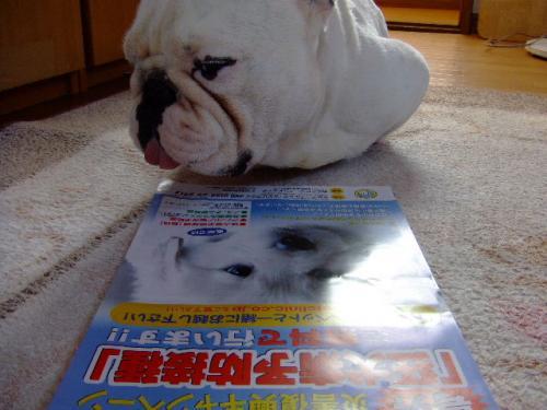2011_0609_10.jpg
