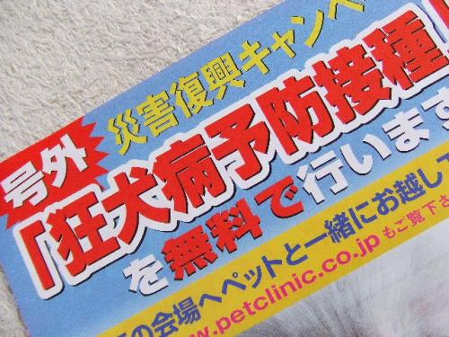 2011_0609_8.jpg