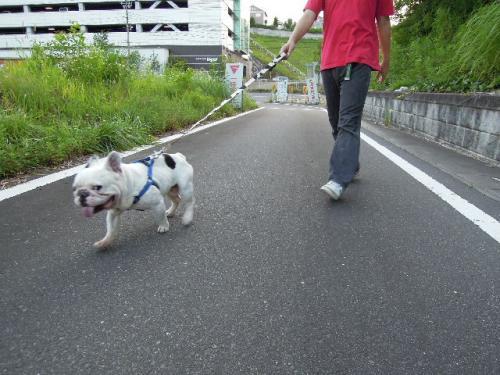 2011_0729_2.jpg