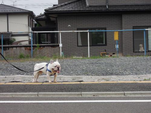 2011_0911_8.jpg