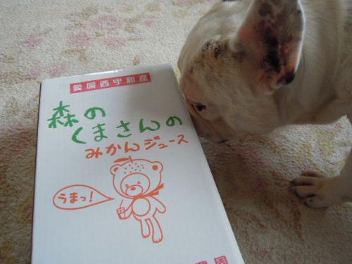 2011_0912_6.jpg