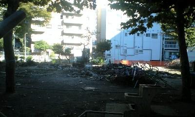 2010-11-11-1.jpg