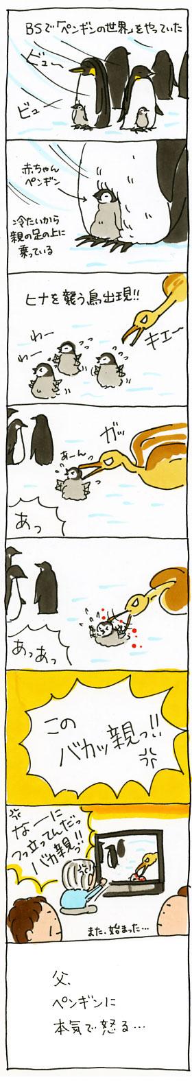 ペンギン怒り