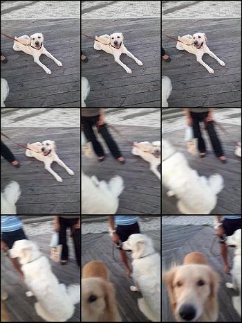 s-2011-09-08_17-55-43.jpg