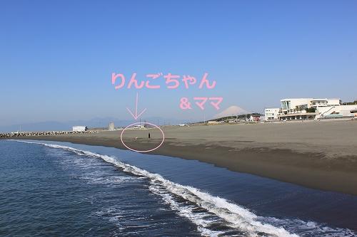 s-IMG_0012_20110401225827.jpg