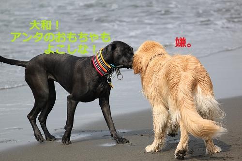 s-IMG_0112_20110606130124.jpg