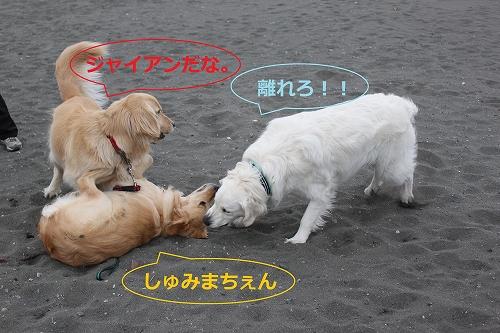 s-IMG_0134_20110403224236.jpg