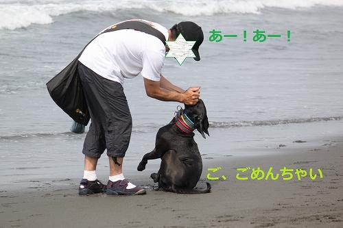 s-IMG_0146_20110606130314.jpg