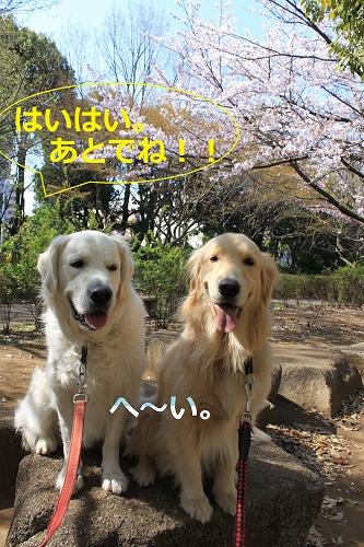 s-IMG_0364_20110412214133.jpg