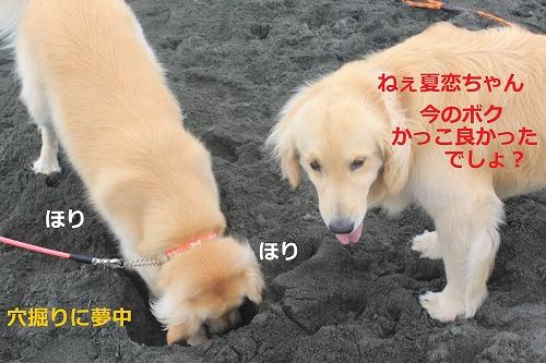 s-IMG_0469.jpg