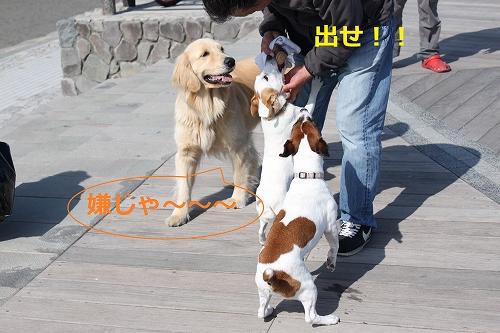 s-IMG_0502.jpg