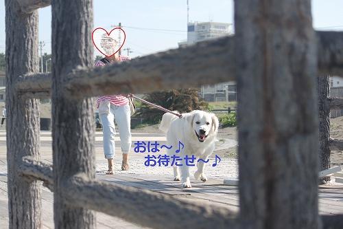 s-IMG_0502_20110623165350.jpg