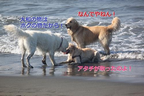 s-IMG_0506_20110623165349.jpg