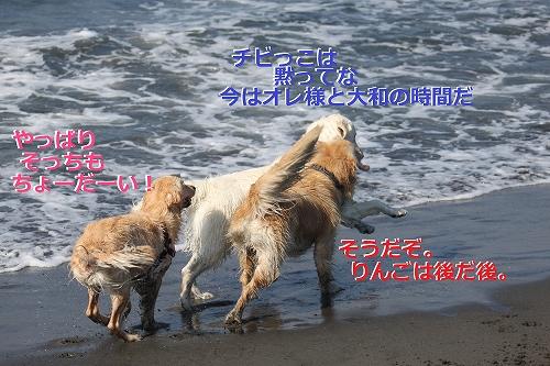 s-IMG_0512_20110623165707.jpg