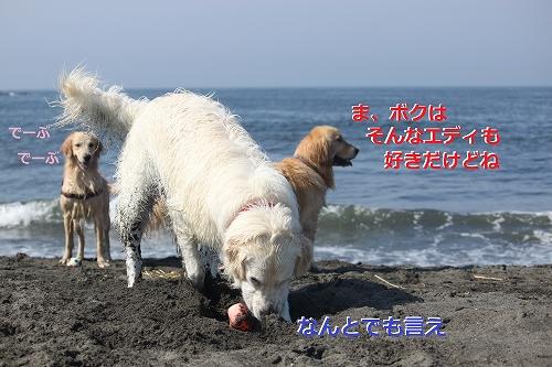 s-IMG_0553_20110623165922.jpg