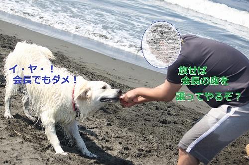 s-IMG_0570_20110623170026.jpg