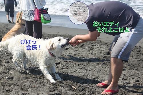 s-IMG_0572_20110623170025.jpg