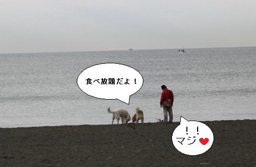 s-IMG_0592.jpg