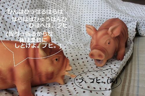 s-IMG_0593.jpg