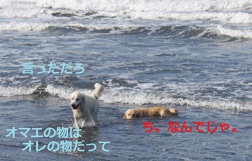 s-IMG_0634.jpg