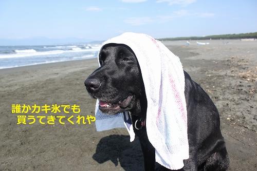 s-IMG_0639_20110625213152.jpg