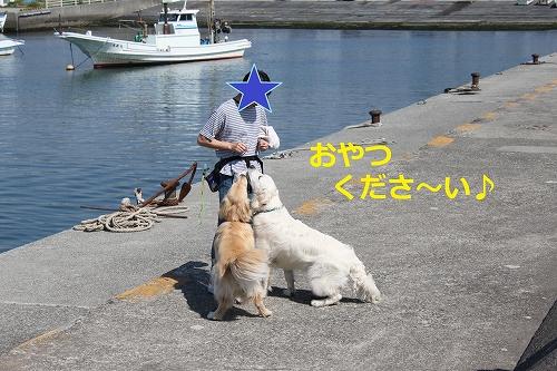 s-IMG_0683_20110429215646.jpg