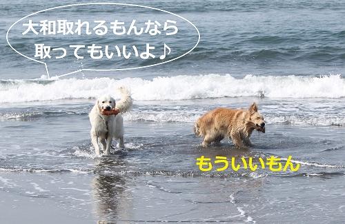 s-IMG_0701.jpg