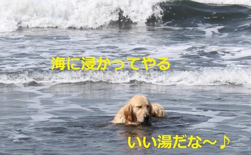 s-IMG_0707.jpg
