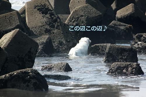 s-IMG_0707_20110629222938.jpg