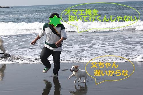 s-IMG_0713.jpg
