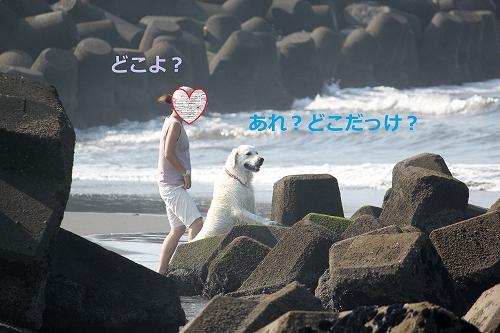 s-IMG_0715.jpg