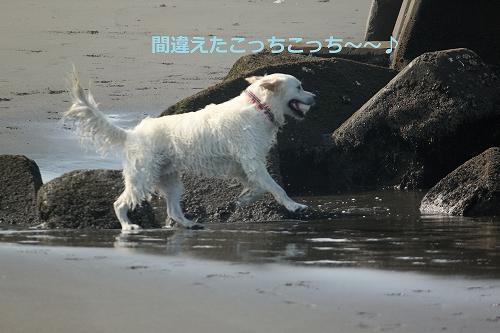 s-IMG_0716.jpg