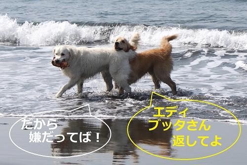 s-IMG_0717.jpg